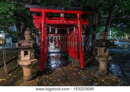 Red Torii Gates Of Hanazono Shinto Shrine, Shinjuku, Tokyo, Japan
