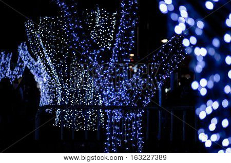 Tree With Blue Lights