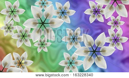 white flowers on iridescent blurred background. Bright floral composition. card for the holiday. Nature.