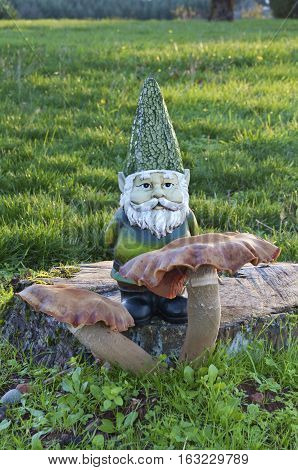 Gnome standing behind a toadstool mushroom on a tree trunk in a meadow at sunset