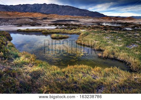 Salt Creek Death Valley California, home of the rare pup fish