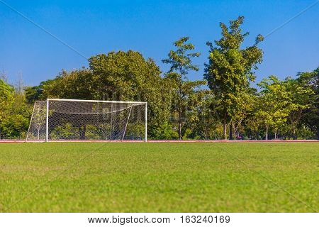 empty green grass soccer field and white goal with trees and blue sky background
