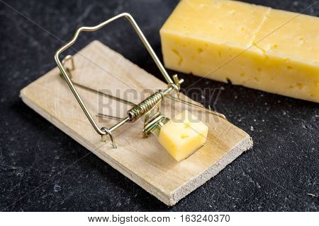 concept food for rodents in mousetrap on wooden background top view