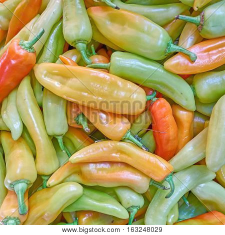 sweet green and orange horn peppers closeup, colorful background