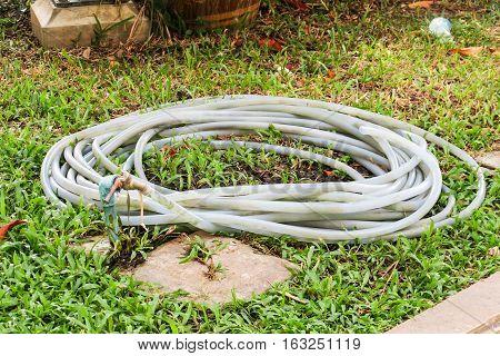 Rolled garden hose. Rubber garden hose on green grass. Hose water