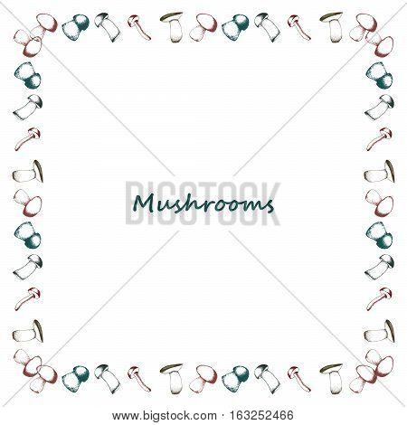 Mushrooms doodle border. Botany Vector vintage sketchy illustration. Square frame. Raw food. Boletus, chanterelle, agaric and russala
