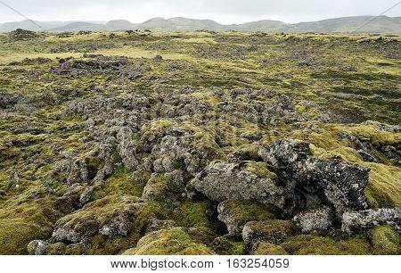 Lava terrain in Iceland. Rocky terrain in Iceland.