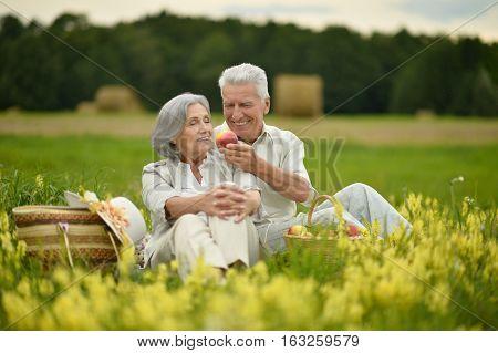 Beautiful senior couple in a summer field