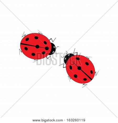 Ladybird two isolated on white background. Cute colorful sign red insect symbol spring summer. Sign of valentine day. Template for t shirt apparel card poster. Design element Vector illustration