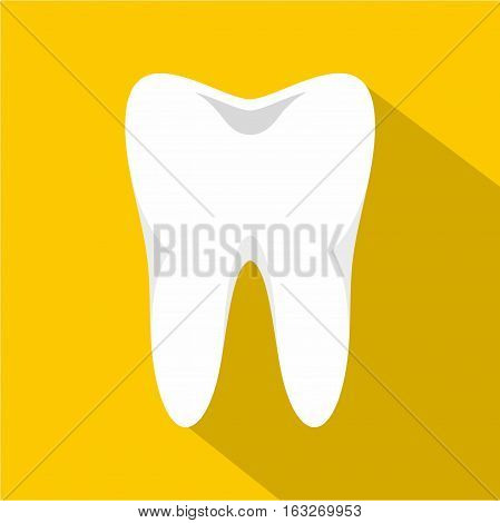 White tooth icon. Flat illustration of white tooth vector icon for web