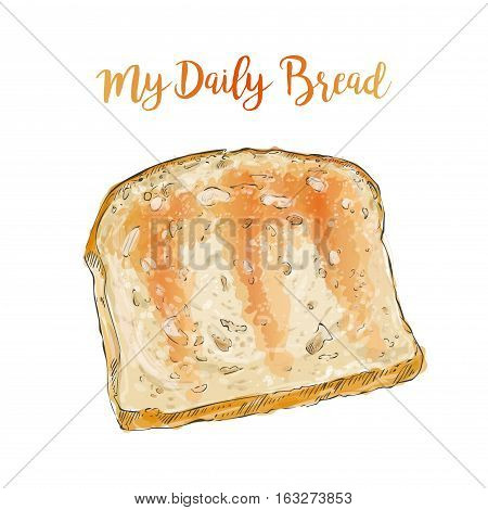 Toasted whole Sliced grain bread isolated on white background top view vector illustration isolated