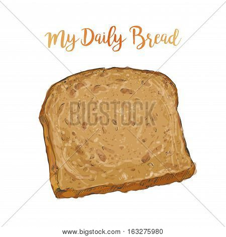 whole grain Sliced Brown bread isolated on white background top view vector illustration isolated