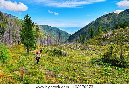 Woman with a backpack going up mountain trail . Eastern Sayan. Russia