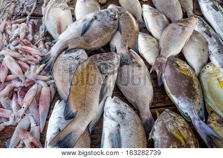 Fresh raw sea fish and sea food market in Asia near fishermen village