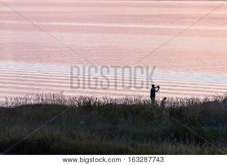 BALTIC SEA, SWEDEN ON JULY 25. View of a summer evening on the shore on July 25, 2013 by the Baltic Sea, Sweden. Grass and flowers this side, unidentified people by the water. Editorial use.