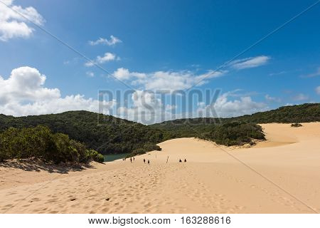 People walking through the Fraser Island sand dunes to get to lake Wabby. It is located in the Great Sandy National Park on the eastern side of Fraser Island off the coast of Queensland, Australia