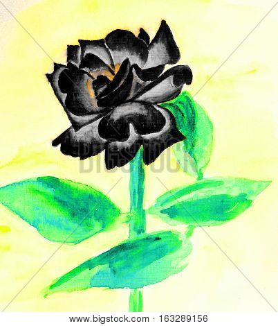 Hand drawn picture, watercolor - black rose on light yellow background.