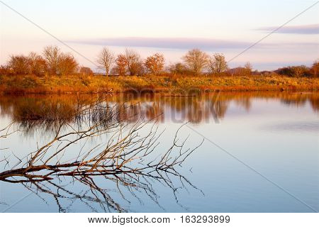 A fall maroon and reddish colors in reflection