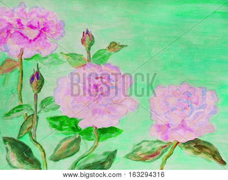 Hand painted picture watercolors - three roses of pink colour.