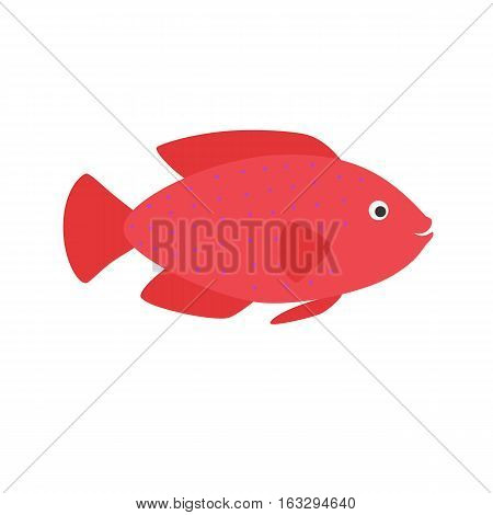 red fish. aquarium exotic fish tropical marine fish. vector