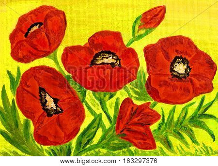Hand painted picture, oil painting, red poppies