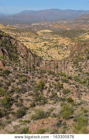 Vertical landscape of the Tonto National Forest in the Sonoran Desert of Arizona.