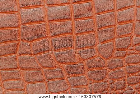 Brown scales background, embossed under the skin of a crocodile close up