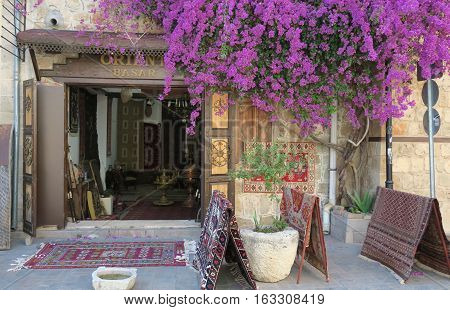 Basar in the Oldtown of Antalya - Kaleici - with some flowers before it, Turkey