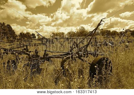 Old rusty trip plows are scattered amongst weeds in a field(sepia)