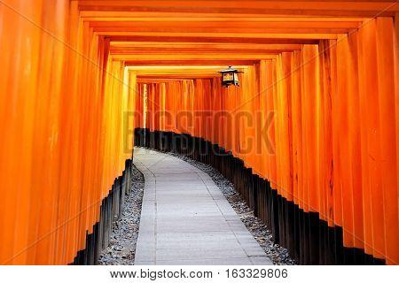 The world cultural heritage red gate way torii corridor in Fushimi Inari Taisha traditional temple in Kyoto Japan