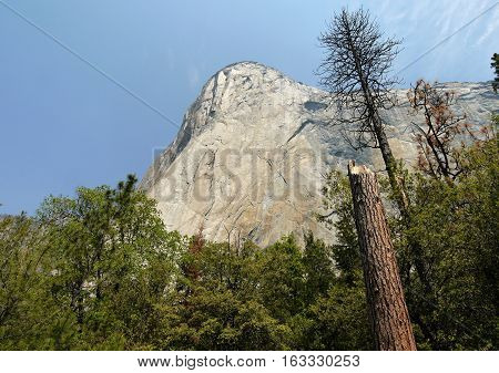 El Capitan. The largest granite wall in the world. Yosemite Valley, California.