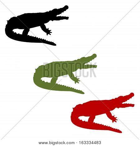 Crocodile Vector Set