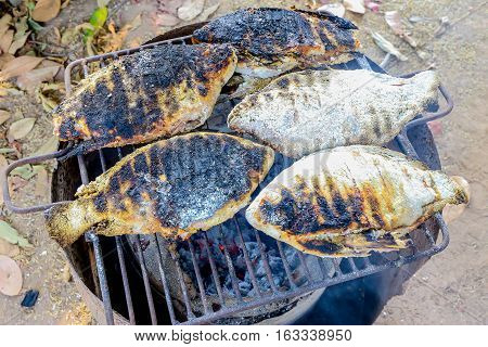 The Thailand style burn or adust grilled fishes in the charcoal grill.