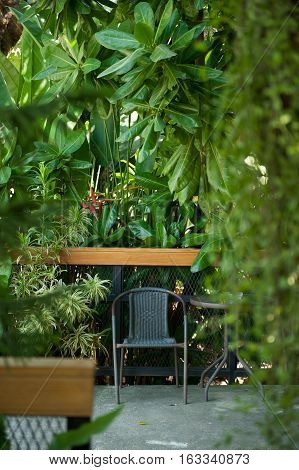 Black chair in the green garden for relax.