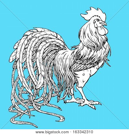 Handsome rooster coloring on blue background. Decorative chicken monochrome. Coloring page book. A symbol of the Chinese new year 2017 according to east calendar.