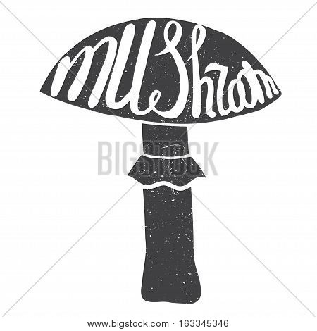 Mushroom graphic drawing trace with art lettering. Vector illustration
