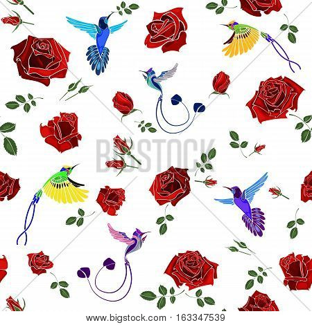 Exotic colibri birds with rose flowers colorful on white background. Seamless pattern. Vector illustration