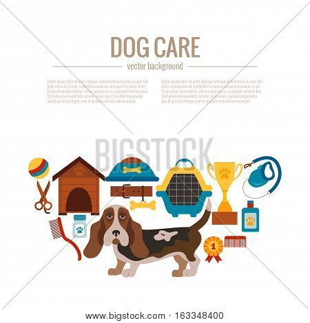 Basset hound care infographic concept with dog grooming isolated elements. Basset hound puppy training colorful cartoon poster vector illustration template for web sites, pet shops or dog care designs.
