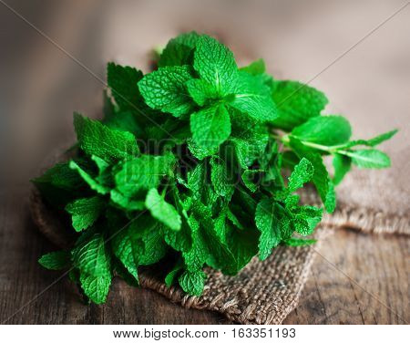 Fresh mint leaves herb on wooden table selective focus close up. Green mint with copy space