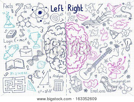 Concept of the human brain. Left and right hemisphere of brain. Concept of brain functions. Hand-drawn pen sketch.
