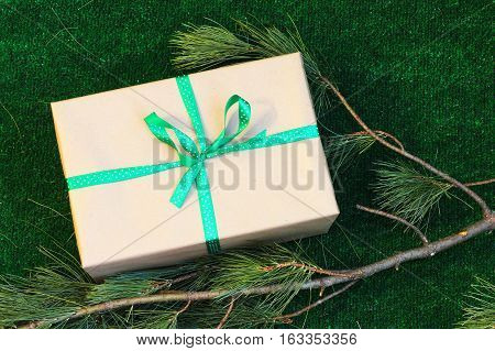 Vintage gift box with green ribbon on a background of green grass with branches of cedar. For your advertising eco store