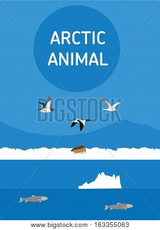 Birds of the Arctic. The Seagull North duck and the eider flying South. Vector drawing of a series of Arctic animals. Flat style illustration