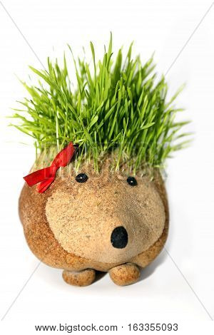 Natural sculture of hedgehog with spines made by growing wheat. Traditional art in some Christian countries for Christmas and New Year