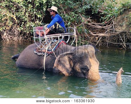 KO CHANG THAILAND - JANUARY 23.2013: mahout sits on the back of an elephant