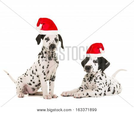 Cute dalmatian puppy lying down facing the camera isolated on a white background both wearing santa's hat for a christmas card
