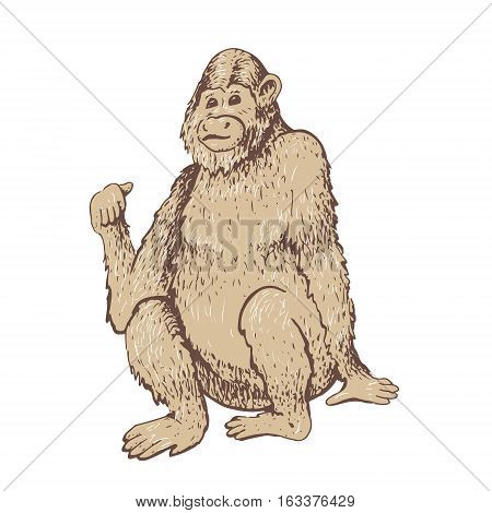 Monkey. Vector illustration. Hand drawn sketch of young orangutan smile, monkey is sitting on its ass and finger is pointing back. Goodbye 2016. Vintage engraving style.