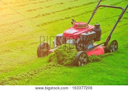 Blurred lawn mower cutting green grass in backyard,Garden service,grass cutter cutting green lawns.