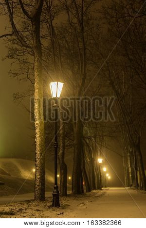 Night park alley view with lanterns during snowstorm.Winter evening. Heavy snowing night