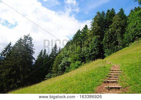 The path to the Harder Kulm summit in Interlaken, Switzerland.