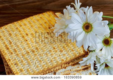 Passover Jewish Food Pesach Matzoh White Gerbera